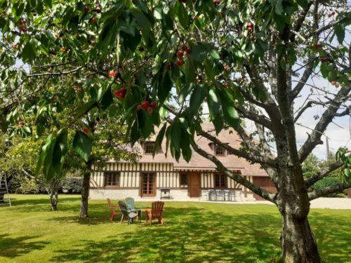 Le Cerisier de Gabin