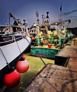 pêche vente à la débarque